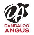 DANDALOO STUD
